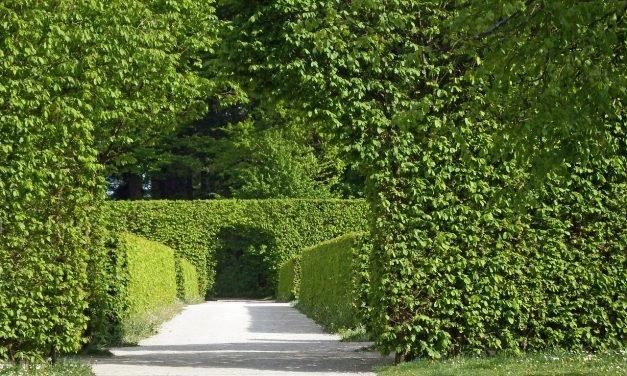 April: Tuinbeurzen en speciale tuindagen