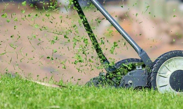 Tips bij het grasmaaien