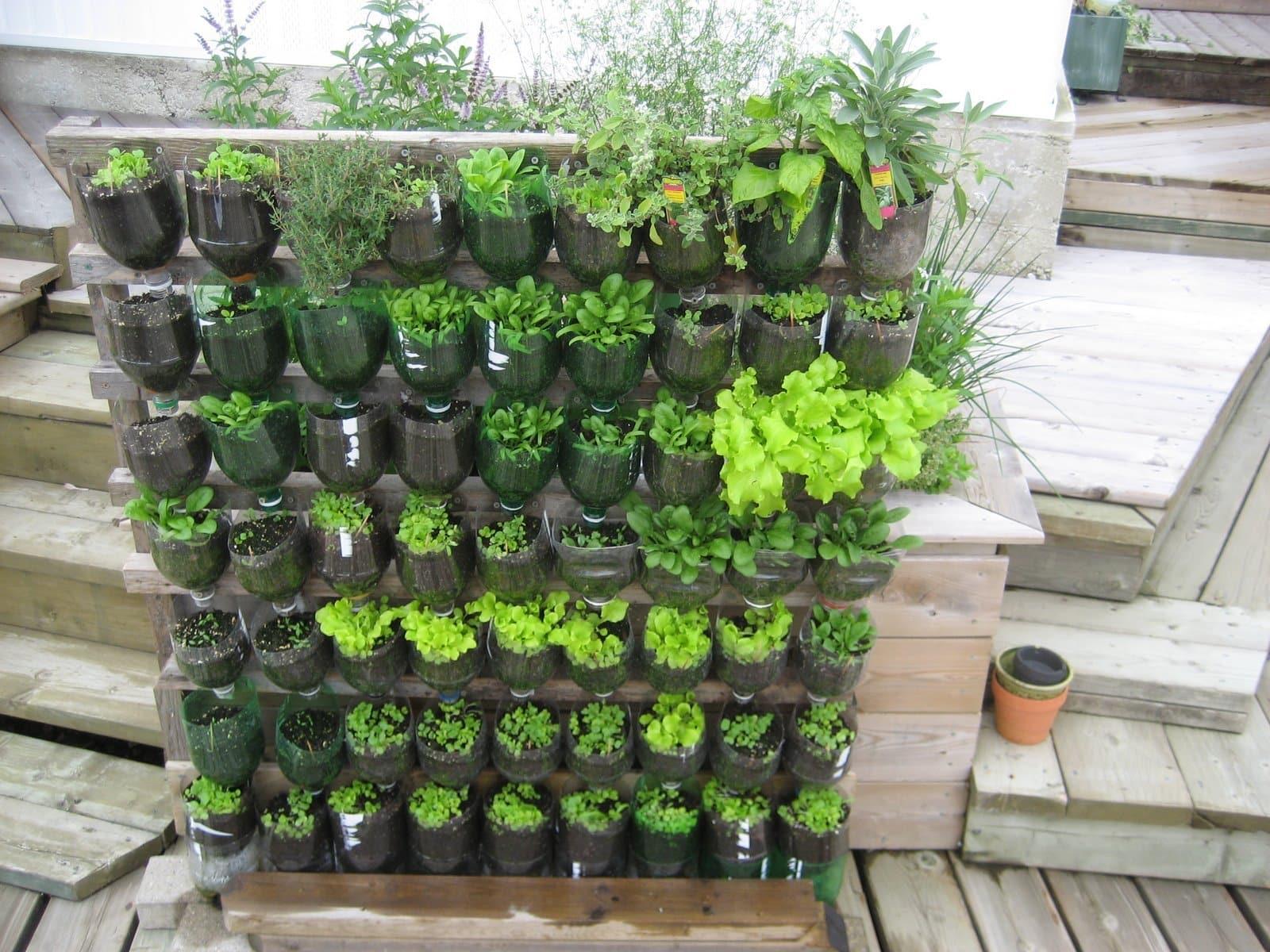Verticale Tuin Maken : Voorbeelden van verticaal tuinieren huisentuinmagazine