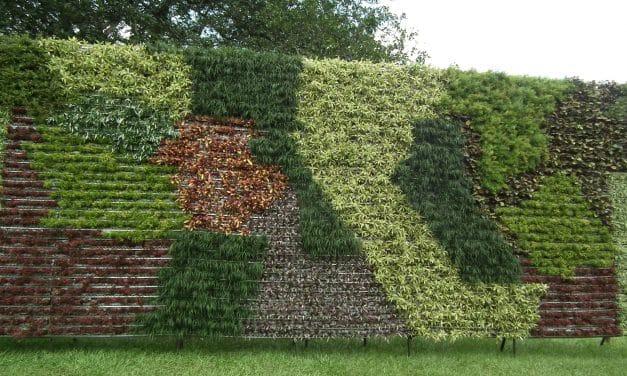 15 voorbeelden van verticaal tuinieren