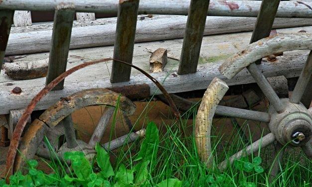 Houtworm en of huiszwam bestrijden