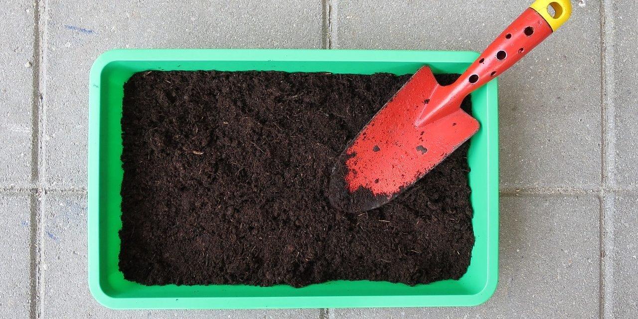 Groenten kweken in kas