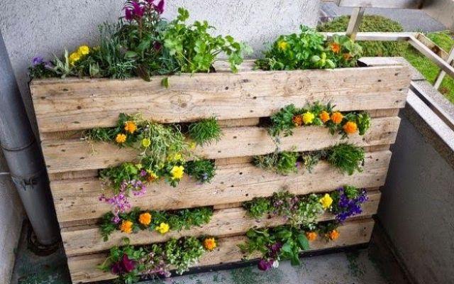 11 x verticaal tuinieren ideeën, van een kleine ruimte naar een grote oogst!