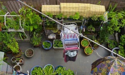Leuke ideeën voor een kleine tuin of balkon