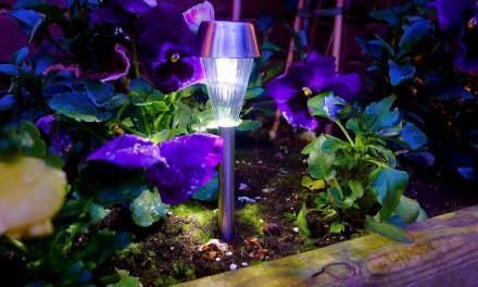 Sfeer creëren in je tuin met led verlichting